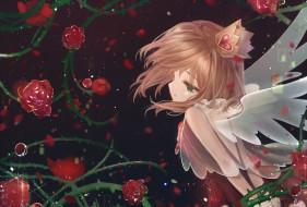 аниме, card captor sakura, девочка