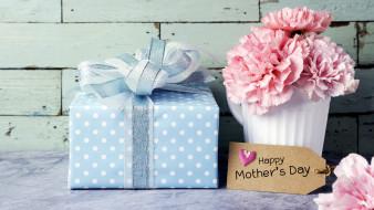 праздничные, день матери, подарок, гвоздики