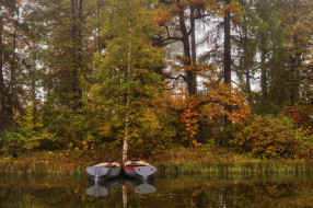 корабли, лодки,  шлюпки, озеро, лес, осень