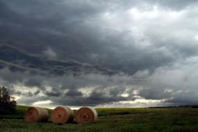 природа, поля, облака, поле