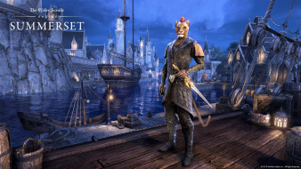 The Elder Scrolls Online, ролевая, онлайн