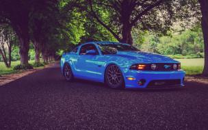 ford mustang shelby gt350, автомобили, mustang, американские, синий, мускулкар, тюнинг, шелби, дорога