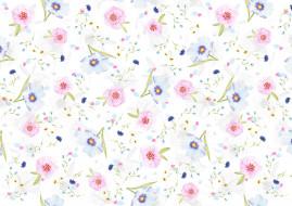 лепестки, цветочки, маргаритки, фон