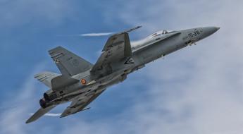 mcdonnell douglas fa-18 hornet, авиация, боевые самолёты, mcdonnell, douglas, fa-18, hornet, самолеты, истребитель, военные, ввс, испании