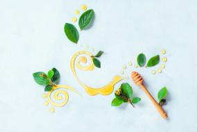 еда, натюрморт, узор, мёд, листья