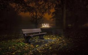листья, природа, скамейка