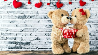подарок, медведи