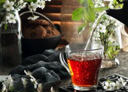 печенье, чай, цветы, ветка