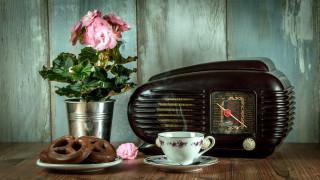 радио, бегония, чай