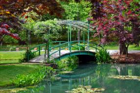 мостик, водоем