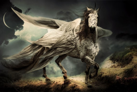 фэнтези, фотоарт, конь, крылья, фон