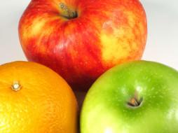 красное, зеленое, яблоки, апельсин