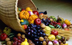виноград, редис, тыква