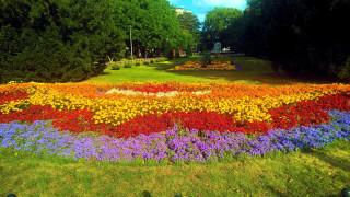 клумбы, цветы, парк