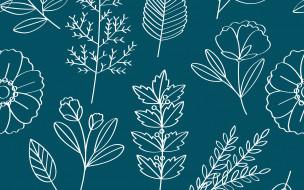 Vector, Floral, листья, цветы, Pattern, текстура, фон