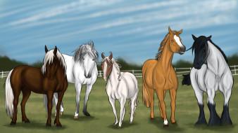 векторная графика, животные , animals, фон, лошади