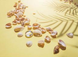 пляж, ракушки, лето, песок
