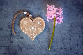 праздничные, день святого валентина,  сердечки,  любовь, сердечко, гиацинт