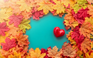 autumn, любовь, love, листья, romantic, leaves, осень, red, heart, сердце, valentine, maple