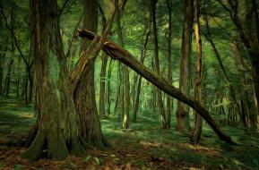 лес, деревья, digital painting