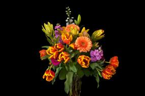 ваза, тюльпаны, букет, маттиола, цветы, черный фон, герберы, левкой