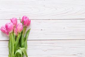 тюльпаны, букет, розовый, фон, цветы