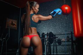 девушка, спорт, бокс, модель