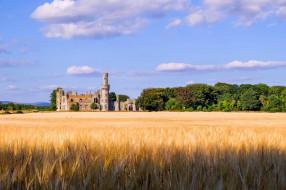 carlow castle, города, замки ирландии, carlow, castle