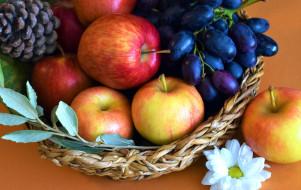виноград, яблоки