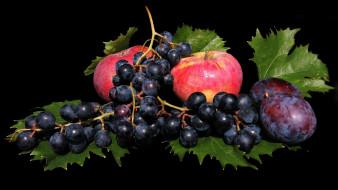 виноград, сливы, яблоки