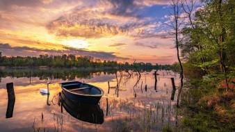 Лебедь, лодка