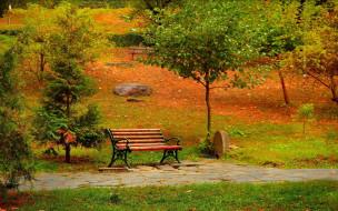аллея, скамейка, осень