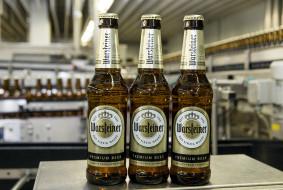 бренды, warsteiner, пиво