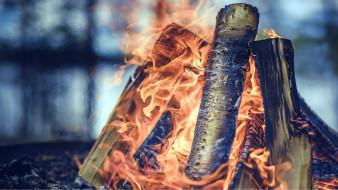 костер, пламя