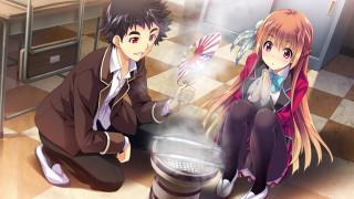 аниме, baka to test to shoukanjuu, фон, взгляд, девушка