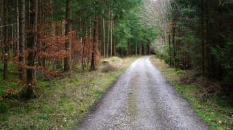 природа, дороги, простор