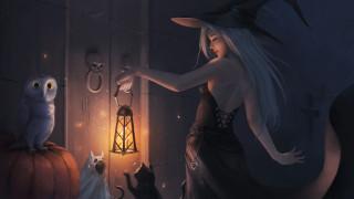 девушка, кошки, сова, шляпа, платье, дверь, арт, фонарь, Halloween, черепа, ведьма