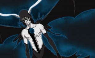 обои для рабочего стола 2474x1530 аниме, bleach, персонаж