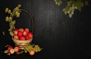 bride, elegantly, nice, beautiful, beauty, хмель, wedding, delicate, корзинка, красивые, природа, настроение, яблоки, красота, bouquet
