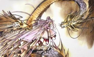 аниме, tsubasa reservoir chronicles, девушка