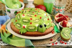 киви, торт, гранат, черепаха