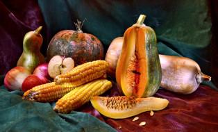 ткань, фрукты, овощи, тыквы, кукуруза, яблоки