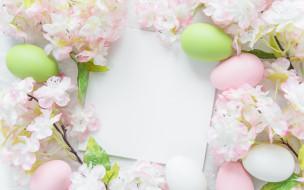 flowers, Пасха, цветы, Happy, яйца крашеные, eggs, Easter, spring