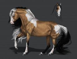 конь, грива, фон