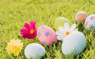 Easter, decoration, pastel colors, Пасха, flowers, spring, яйца, цветы, трава, eggs