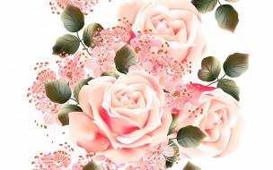 векторная графика, цветы , flowers, текстура, розы, фон, цветы, белый