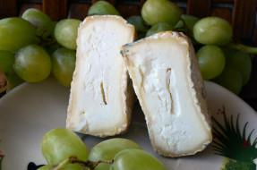 еда, сырные изделия, сыр