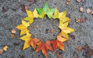 природа, листья, maple, осенние, leaves, autumn, клен, colorful, осень
