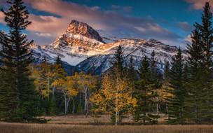 Альберта, снежные, синева, вершины, Канада, ели, осенняя, осень, облака, снег, лес, деревья, горы, природа, небо