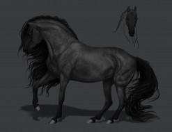 рисованное, животные,  лошади, грива, фон, конь
